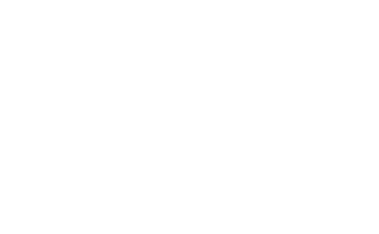 LOGO-W-I-R.-transparency-White-lettering